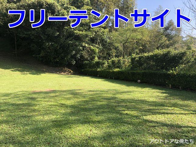 芝生のフリーテントサイト