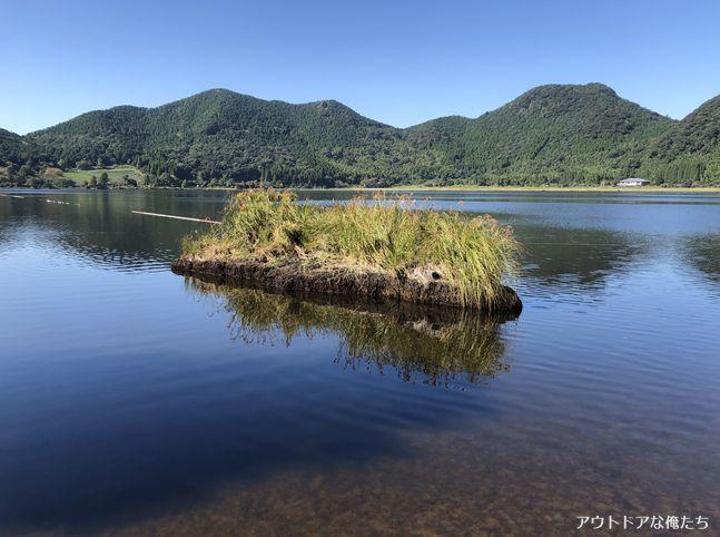藺牟田池の水辺