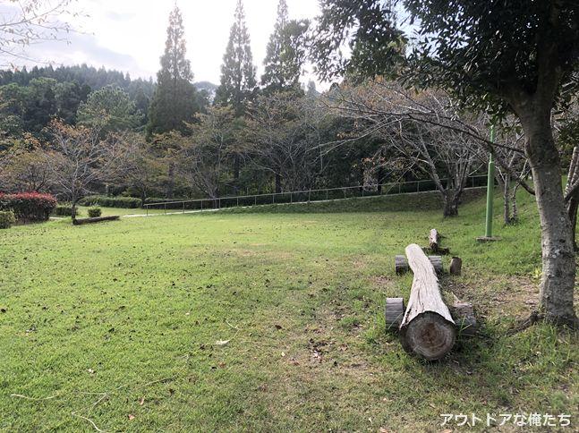 観音ヶ池市民の森のキャンプ場