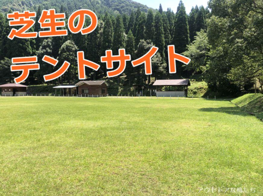 芝生のテントサイト
