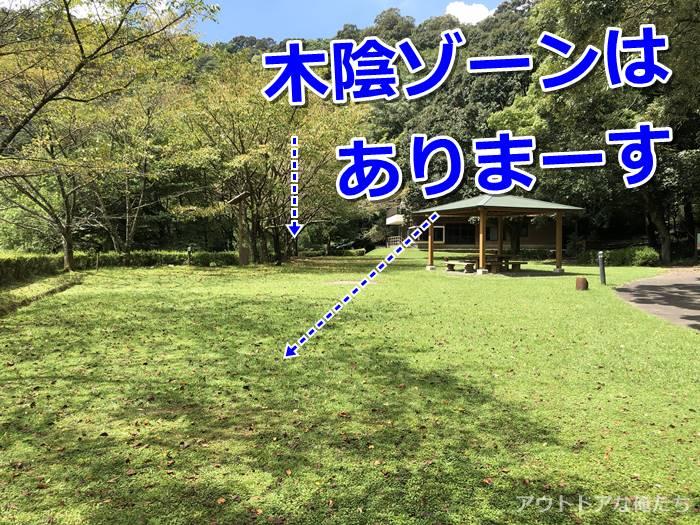木陰のテントサイト