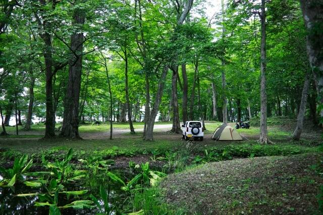 森のキャンプ場