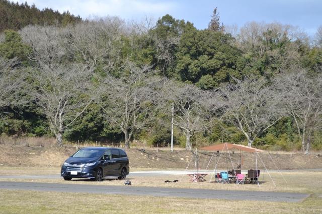 車とデイキャンプ