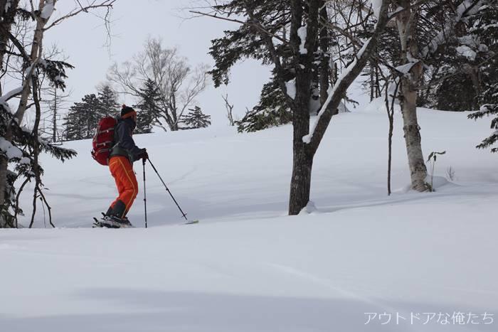 BCスキー