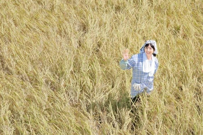 田んぼにいる女性